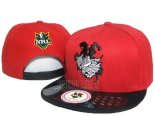 NRL Snapbacks Casquettes Dragons(3)