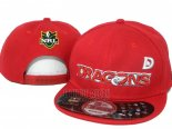 NRL Snapbacks Casquettes Dragons(2)